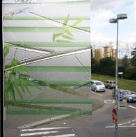 Bamboo self-adhesive films